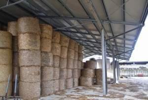 Capannoni prefabbricati uso agricolo