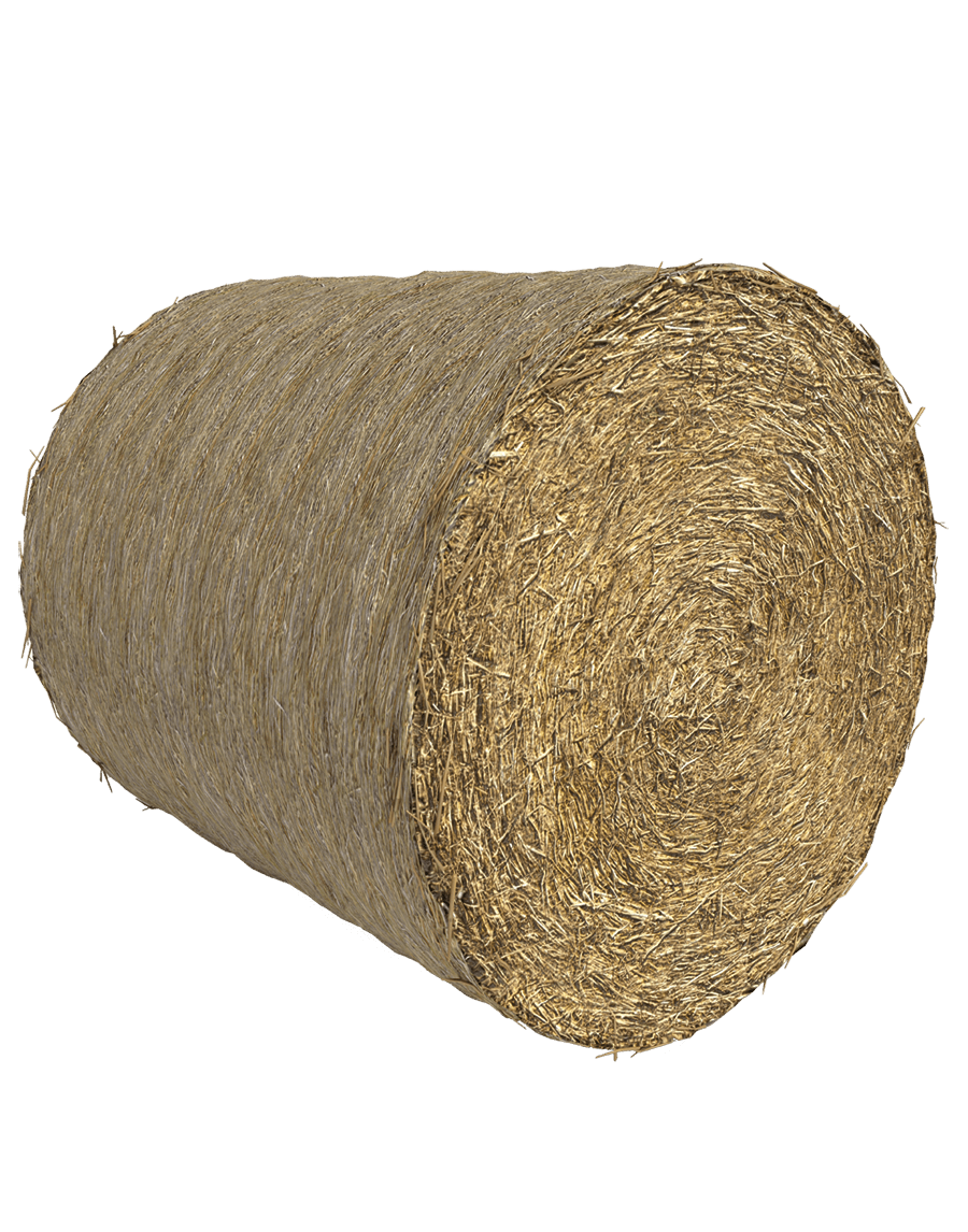 Capannoni prefabbricati ad uso agricolo