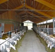 Capannoni-prefabbricati-in-legno-lamellare-12