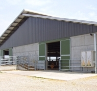 Capannoni-prefabbricati-per-bovini-da-carne-12