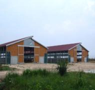 Capannoni-prefabbricati-per-bovini-da-carne-16