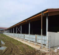 Capannoni-prefabbricati-per-bovini-da-carne-18