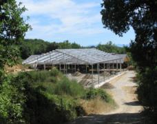 Capannoni-prefabbricati-uso-agricolo-1
